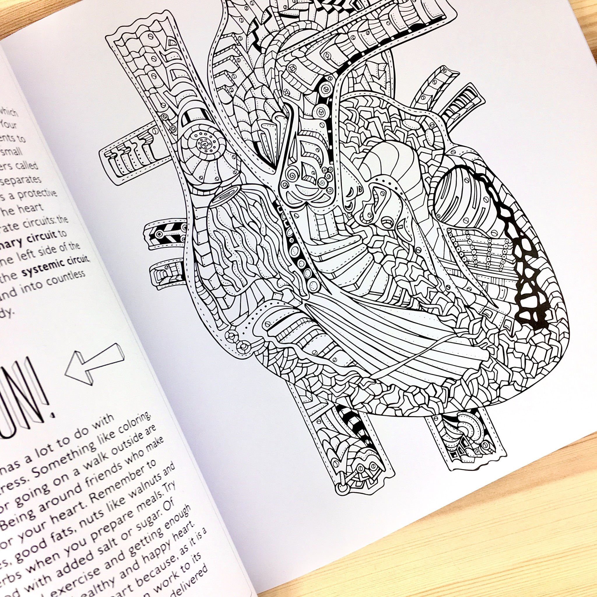 Artery Ink Show Me Your Guts Adult Coloring Book