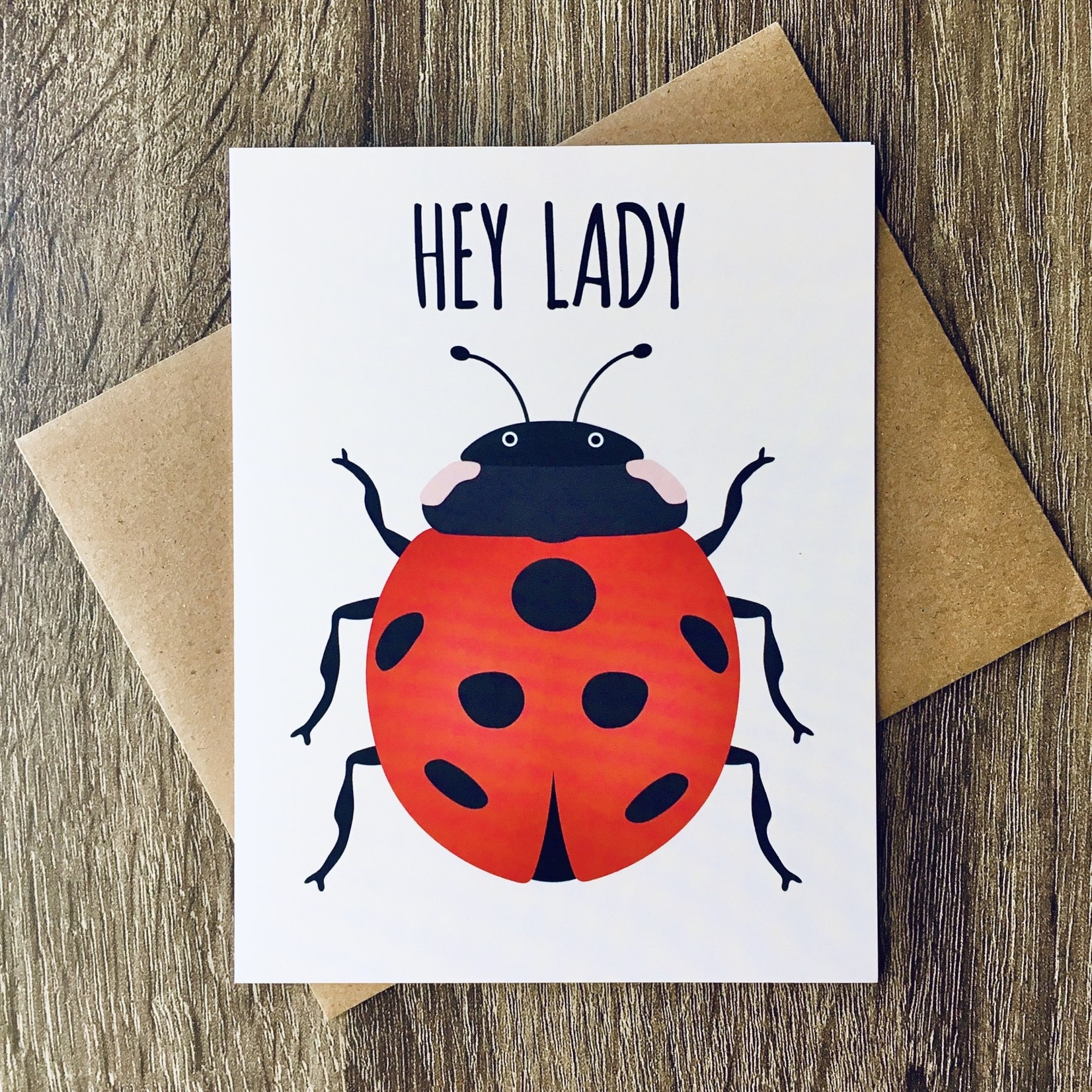 Mr. Sogs Creatures Hey Lady Ladybug Greeting Card