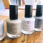 Stella Chroma / Paint Box Polish Silver Collection Nail Polish