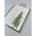 Green Bird Press Conifer Gift Enclosure Card
