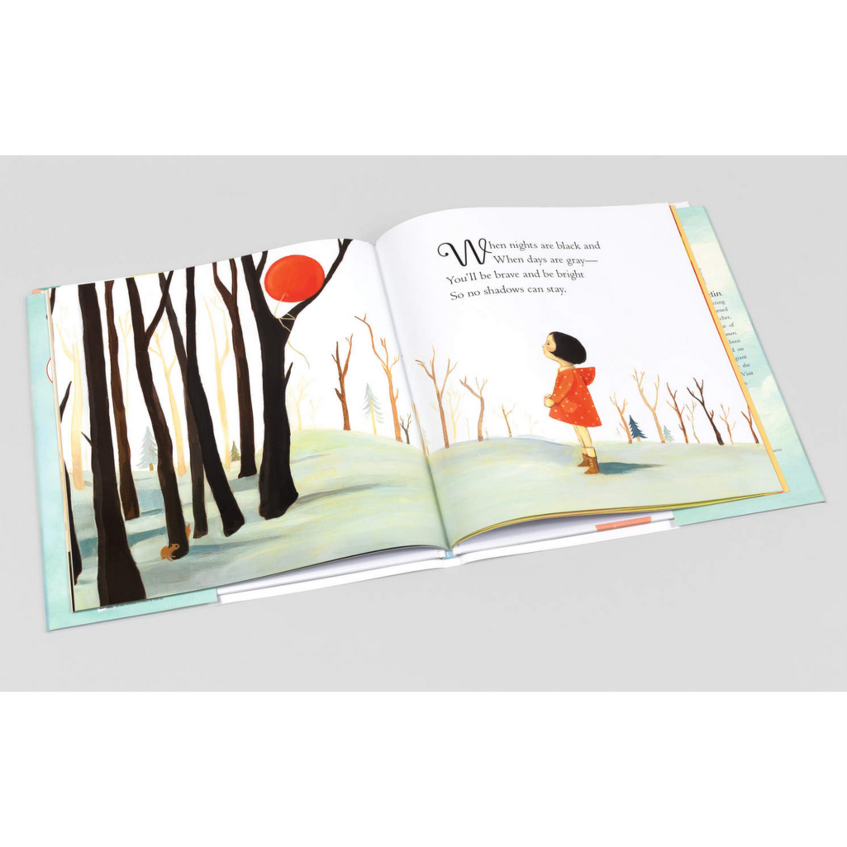 The Black Apple The Wonderful Things You Will Be Book - Emily Winfield Martin