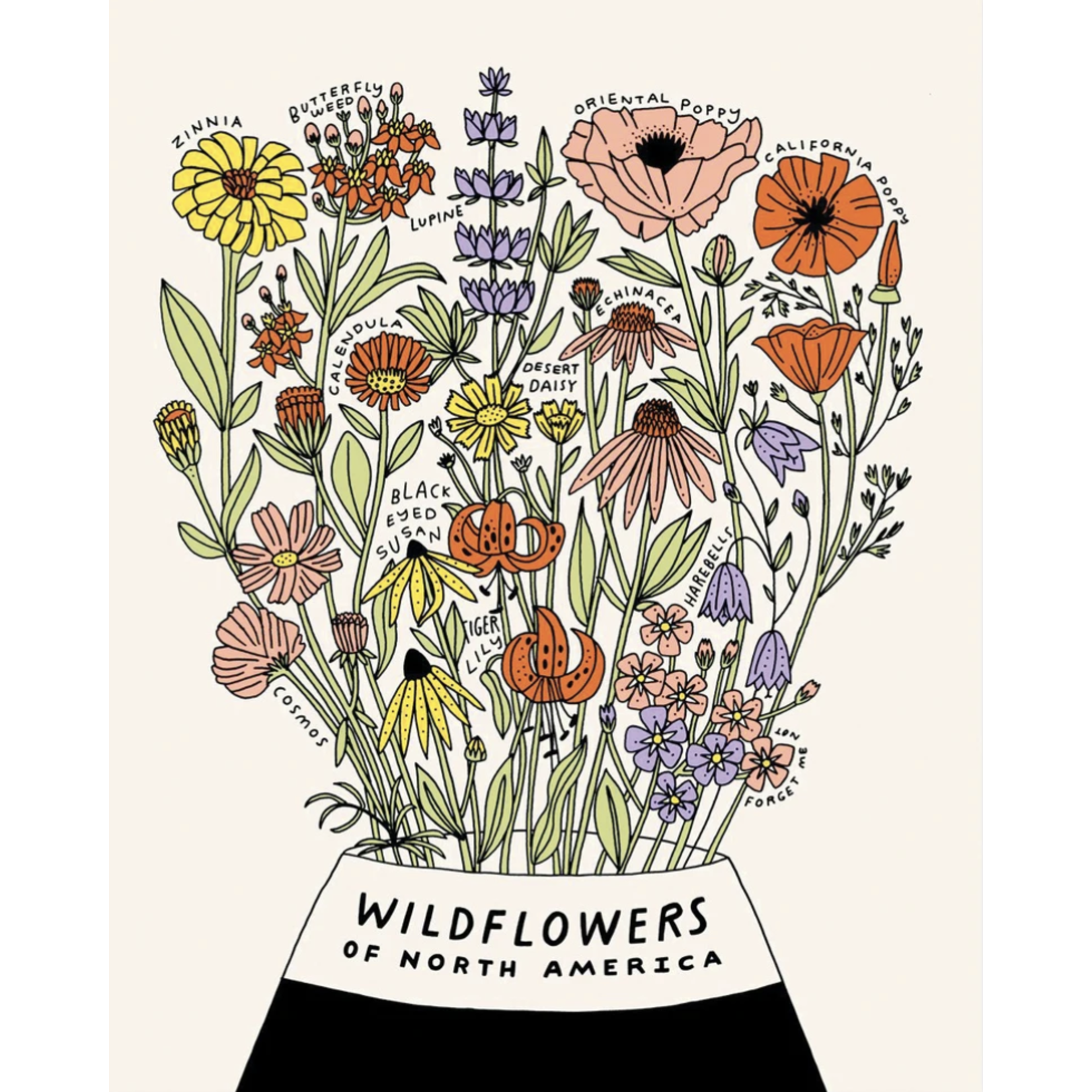 Worthwhile Paper Wildflowers Of North America 11x14 Art Print