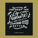 Worthwhile Paper Nature Understand Everything Einstein Quote 8x10 Art Print