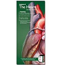 Pocket Study Guide - Heart