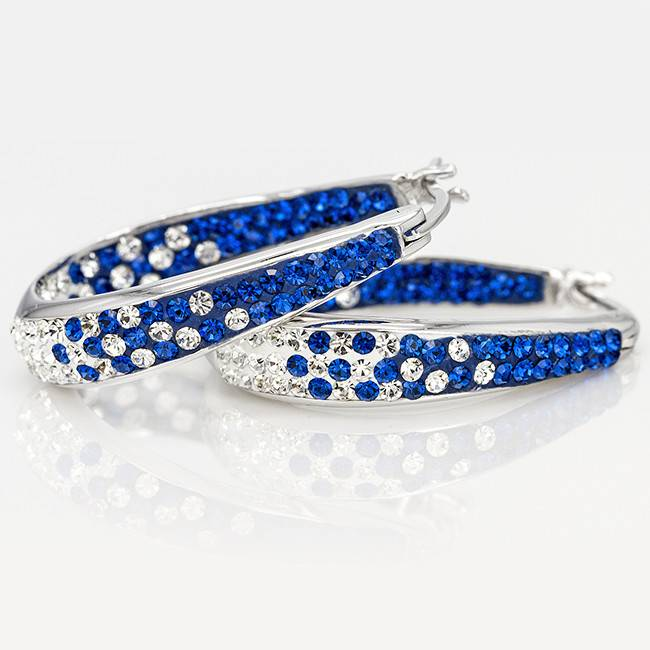 Chelsea Taylor BLUE AND WHITE CRYSTAL HORSESHOE HOOP EARRINGS
