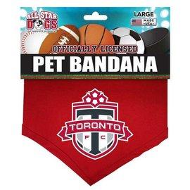 All Star Dogs Toronto Football Club