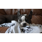 Be One Breed Blanket Frenchie 30 X 40