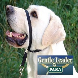 Gentle Leader Head Collar Black