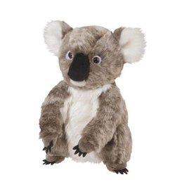 Douglas Douglas | Aussie Koala