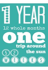 First Trip Around the Sun Birthday Card