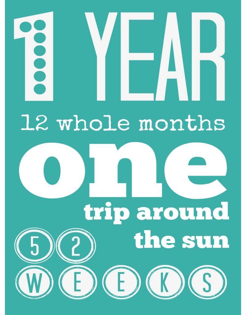 First Trip Around the Sun Birthday Card