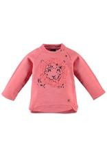 BabyFace Babyface | Coral Lion Sweatshirt