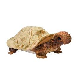 Douglas Douglas | Speedy Tortoise