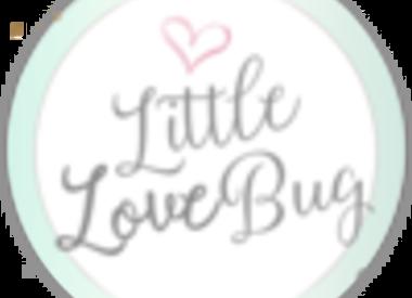 Little Love Bug Company