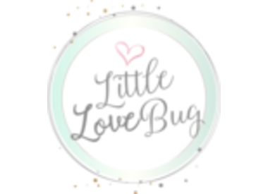 Little Love Bug Company