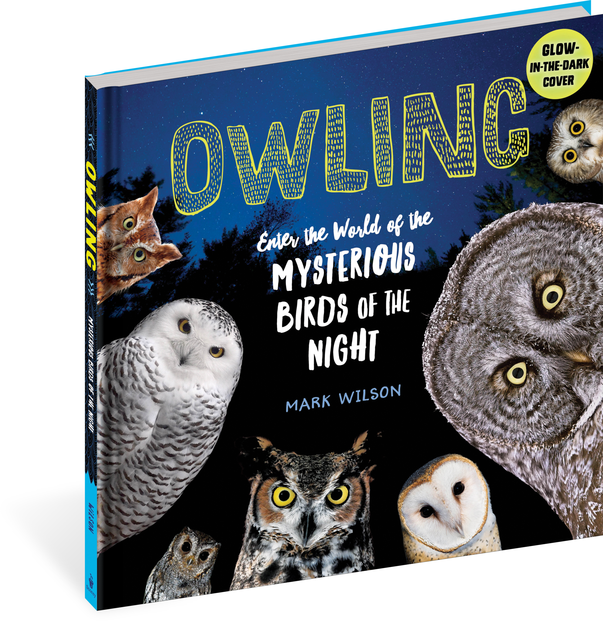 Workman Publishing Owling