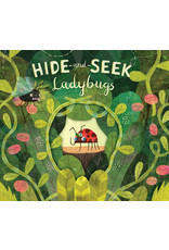 Hide and Seek Ladybugs