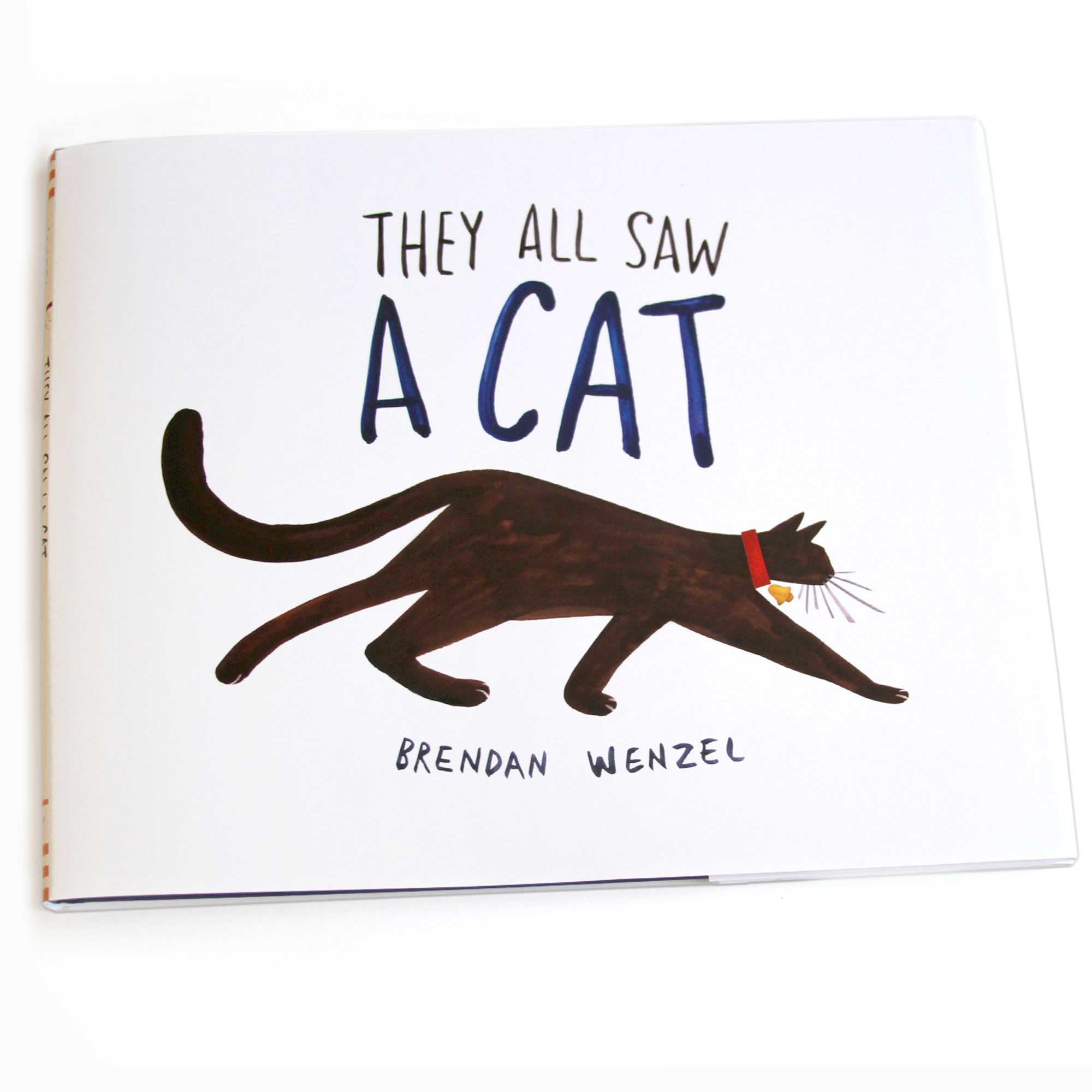 They All Saw A Cat | Book