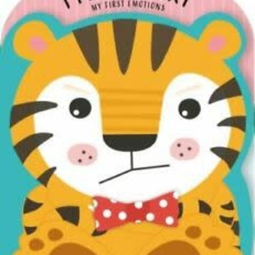 I Feel Angry   Board Book