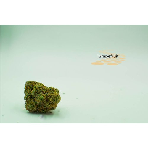 Grapefruit - Sativa