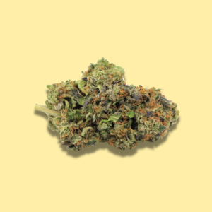 Indica Tom Ford Pink  Oz Special