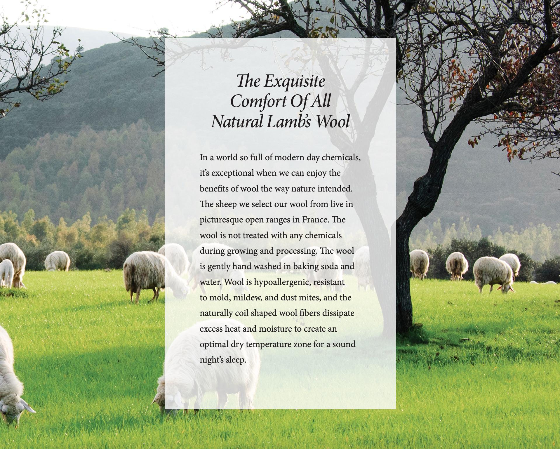 Royal Pedic Natural Lambs Wool