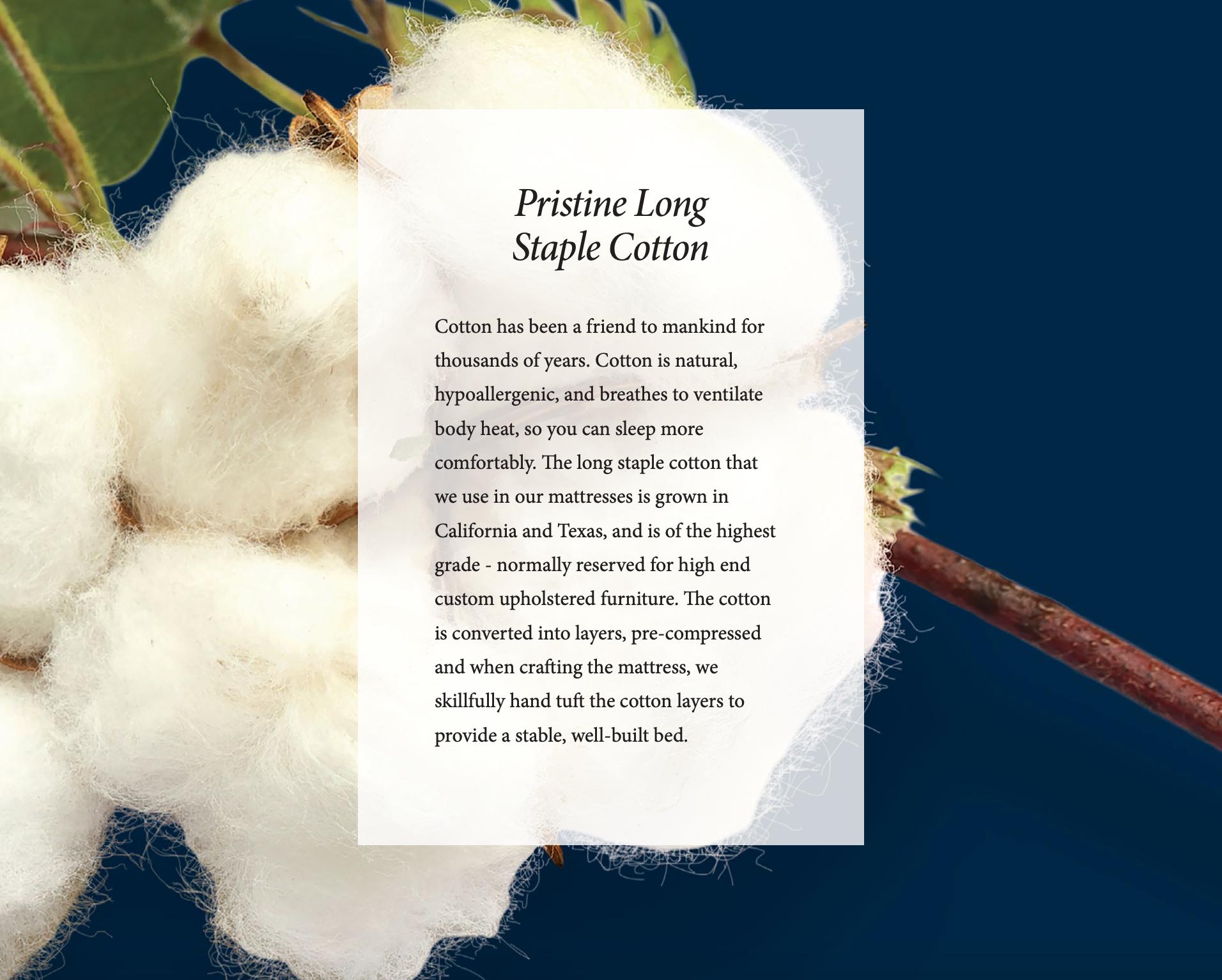 Royal Pedic Long Staple Cotton