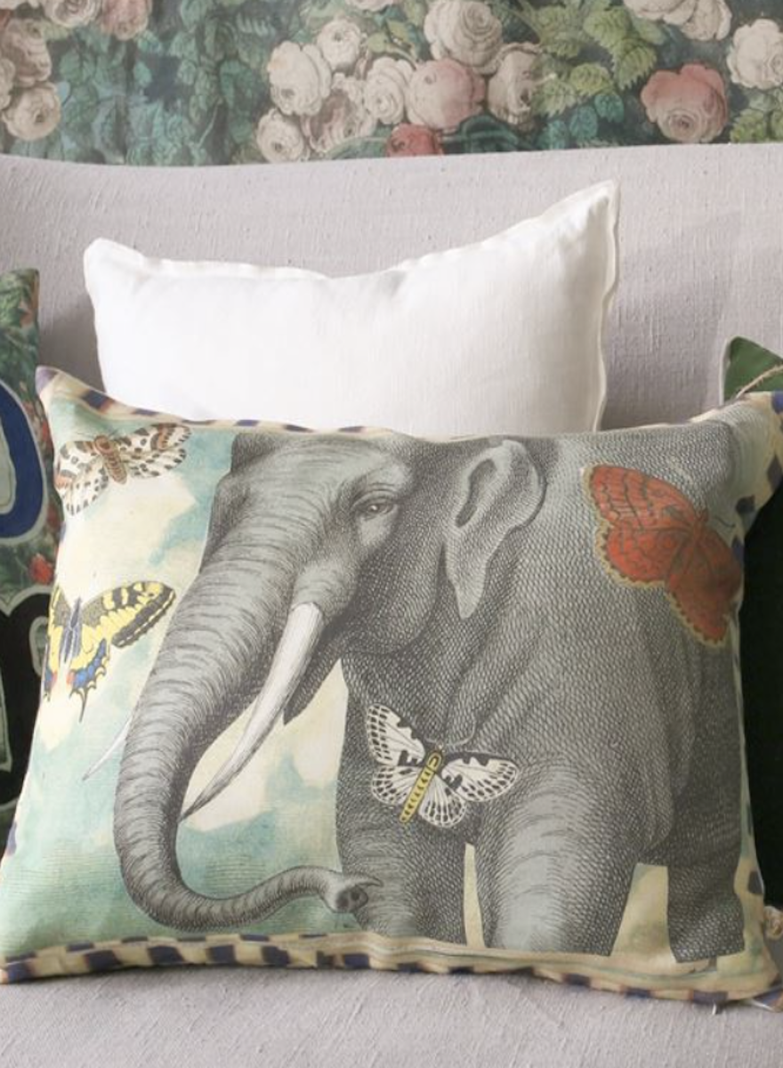 Elephant's Trunk Sky Pillow-1