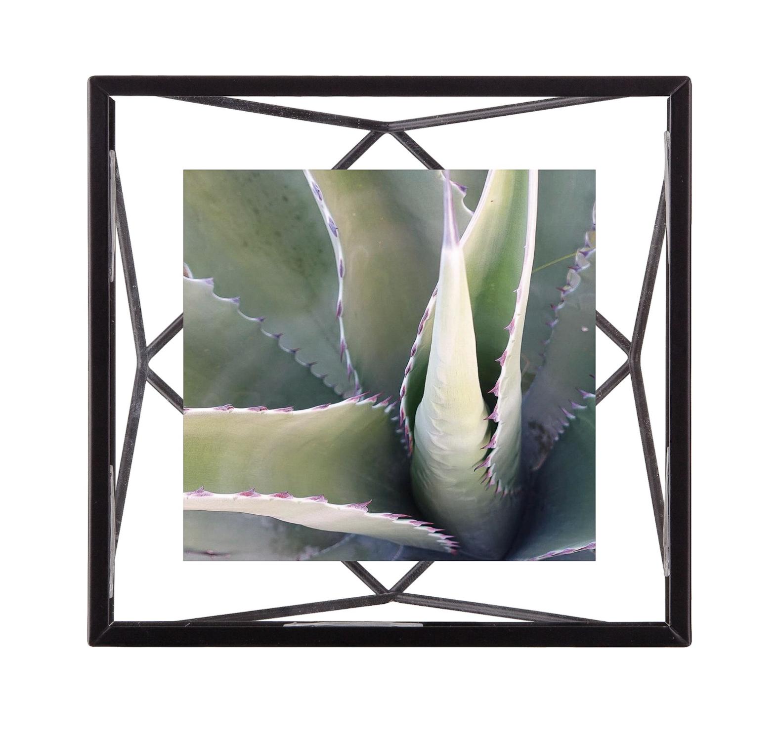 Prisma Picture Frame-1