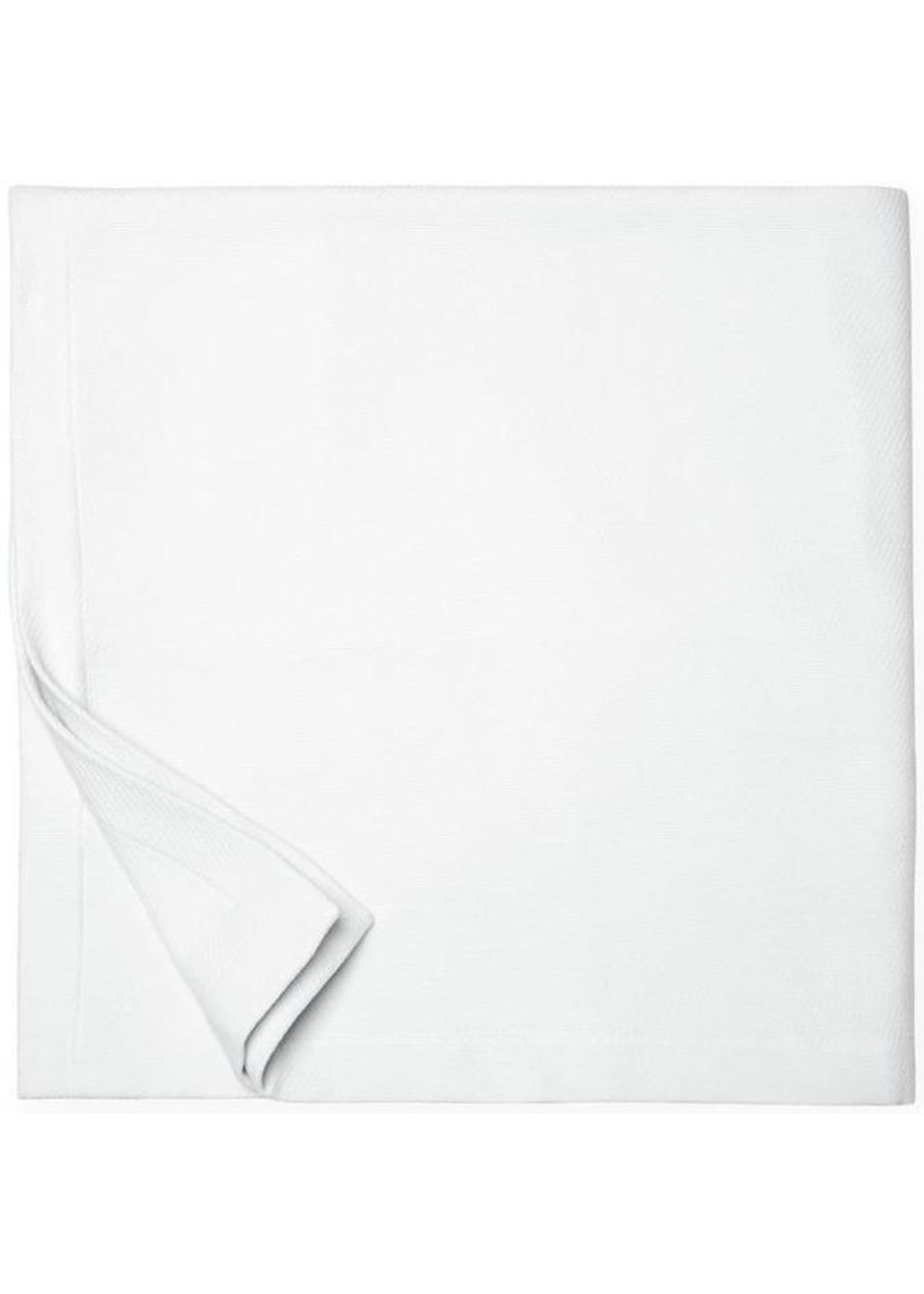 Sferra Sferra Allegra Blankets