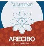 Alementary Arecibo (4pk 12oz cans)