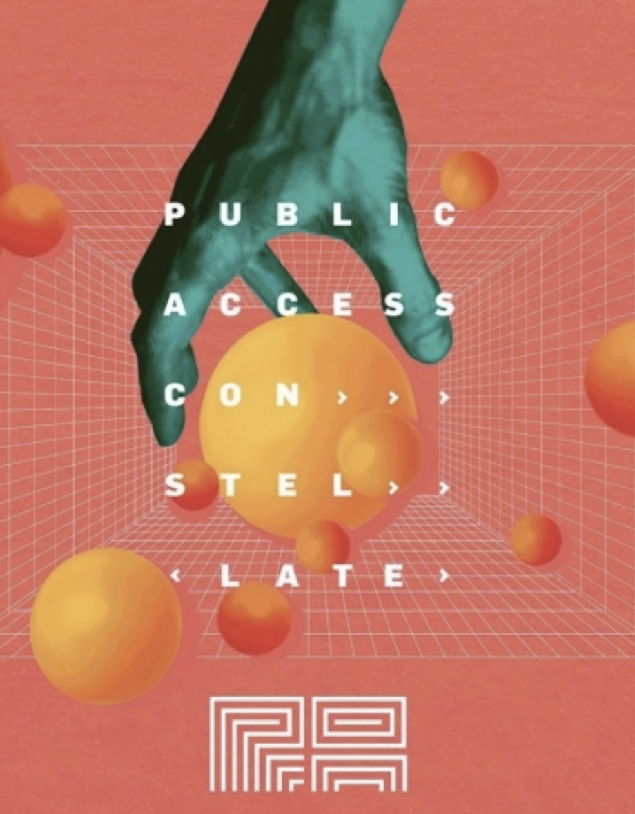 Public Access Constellate (4pk 16oz cans)