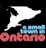 Aslin A small Town in Ontario (4pk 16oz cans)
