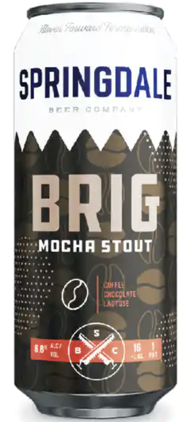 Springdale Brigadeiro Mocha Stout (4pk 16oz cans)