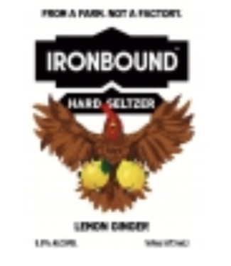 Ironbound Ironbound Lemon Ginger Seltzer (4pk 16oz cans)