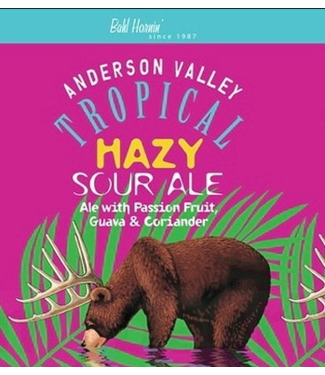 Anderson Valley Anderson Valley Tropical Hazy Sour (6pk 12oz cans)
