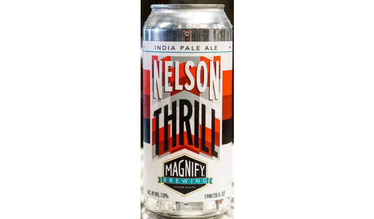Magnify Magnify Nelson Thrill (4pk 16oz cans)