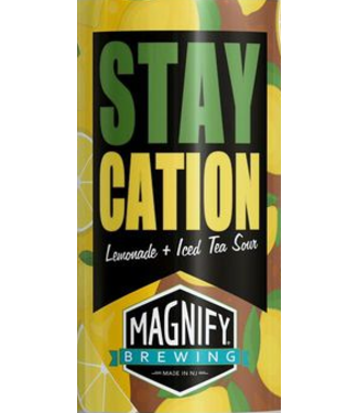 Magnify Magnify Staycation (4pk 16oz cans)
