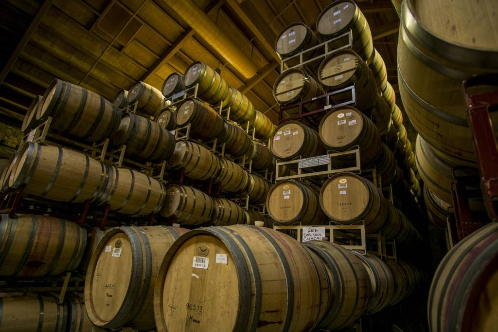 Winemaking 101: The Basics
