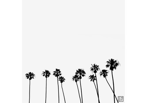 "Austin Chow ""Palms // California"""