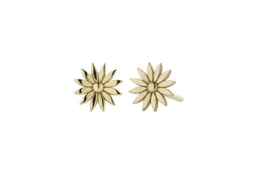 Meadowlark Dazed Stud Earrings