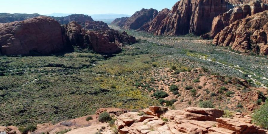 A Colorful Guide to Snow Canyon State Park: A Labyrinth of Red Rocks at the Doorstep of St. George