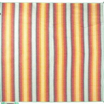 NEMO Nemo - Victory Blanket