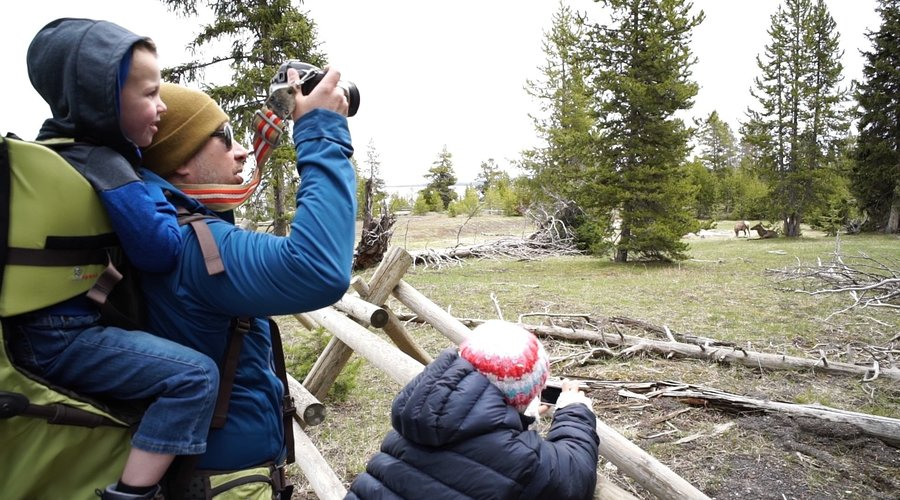7 Tips For Surviving Yellowstone with Children