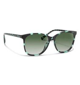 FORECAST OPTICS Forecast Optics - Harper Sunglasses