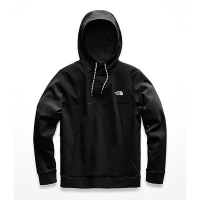 THE NORTH FACE The North Face - Tekno Logo Hoodie-Men's