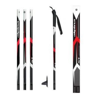 ALPINA Alpina - Sports SP ASC ST Regular Ski Pole