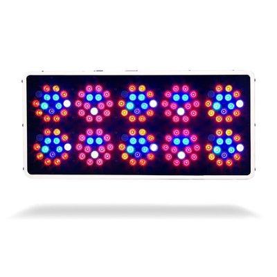 Lighting Kind LED Indoor Grow Light - K3 Series L600 Vegetative