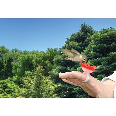 Home and Garden Hummer Ring Hummingbird Hand Feeder - Red