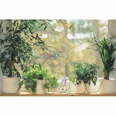 Home and Garden Blumat Classic Junior Indoor Automatic Watering System